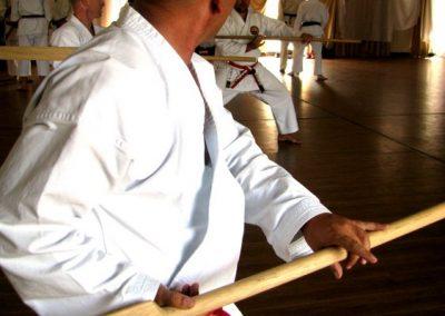 dissipline-gallery-karate-006