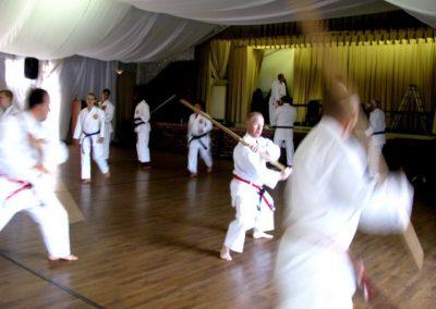 dissipline-gallery-karate-007