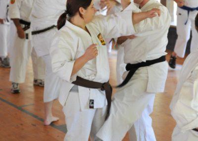 dissipline-senior-instructors-shorin-ryu-shorinkan-40