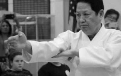 What is Kihon, Kata and Kumite?